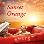 Psling Gradation Sunset Orange Icons